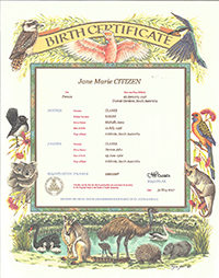 Birth Certificate – Australiana design certificate with a border of Australian birds and animals, including a kangaroo, koala, wombat and an echidna. Birds include a kookaburra, black swan, rosella and a Willy-wagtail. The information on the certificate includes name of the child, sex, place of birth. Names and age of the parents. The Registration number and the date of the birth.