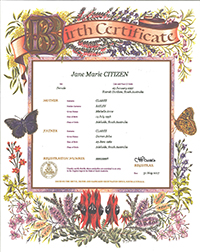 Birth Certificate – Australiana style with Australian native flowers as a border, including Sturt desert pea, pink heath, wattle, flannel flowers and bottlebrush. The information on the certificate includes name of the child, sex, place of birth. Names and age of the parents. The Registration number and the date of the birth.